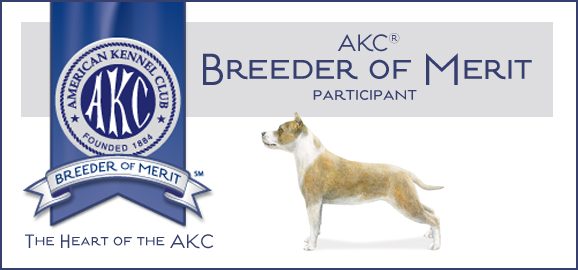 breeder of merit 2013