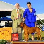 Ch. Diablos Its About Time Best of Breed at Tampa Bay Terrier Specialty