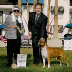 2011 National Veteran Dog Placement