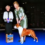 "Ch. Diablos Forever In Time ""Godric"" Winners Dog at Eukanuba Cluster"